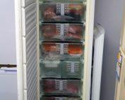 congelateur combine integrable liebherr